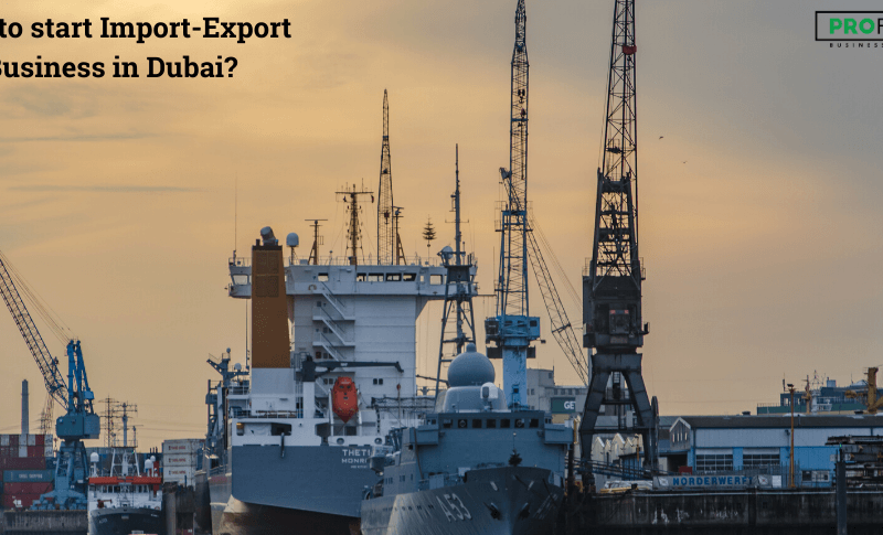 import-export business in Dubai